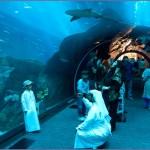 aquarium Dubai 1 150x150 Стеклянный туннель аквариума в Дубае