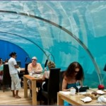 ithaa 2 150x150 Подводный ресторан Ithaa, Мальдивы