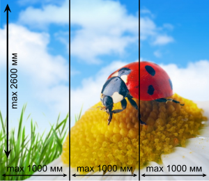 polnocvet max 300x260 Полноцветная печать на стекле