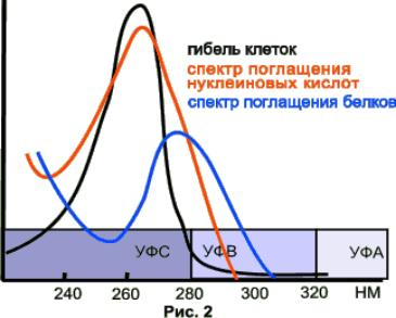 articles kak low e steklo vliyaet na rasteniya 02 Как энергосберегающее стекло влияет на растения