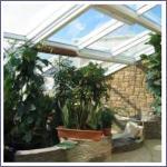 Влияние специализированного стекла на рост растений